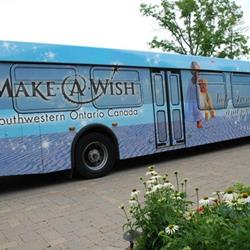 Click to view album: Wrapped Buses